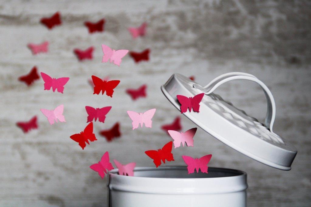 Bild: Schmetterlinge fliegen frei. Man muss sich nichts verdienen. Lassen wir uns selbst frei.